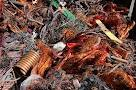 Куплю Медь лом отходы стружку Киев Дорого 067-937-81-66