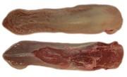 Продаем свиной язык оптом (Германия),  глубокой заморозки,  не обрезной.