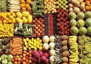 Продам широкий асортимент імпортних овочів та фруктів гуртом.