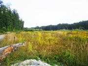 Вкусные земельные участки недорого Киев и область