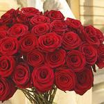 Ослепительный букет роз. Доставка бесплатно!