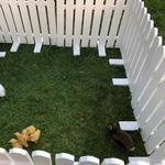 Заборчик садовый. Декоративное ограждения