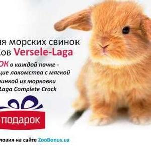Корм для кроликов и морских свинок с лакомствами в пачке Верселе_Лага