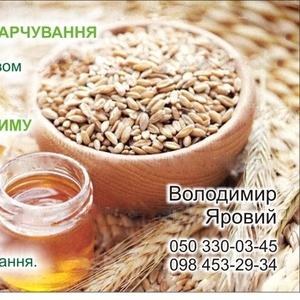 Продам пшеницу, рожь, зерно амаранта, растительные масла.