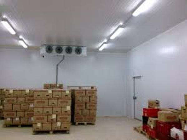 Камеры хранения и заморозки продуктов 13