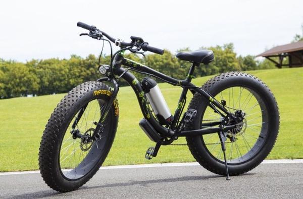 Электровелосипед Фэтбайк с бесплатной доставкой