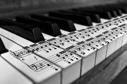 Настройка фортепиано пианино рояля