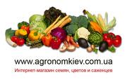 Интернет-магазин семян,  цветов и саженцев,  семена и саженцы почтой
