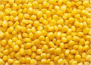 Закупаем на постоянной основе кукурузу,  пшеницу,  ячмень,  сою