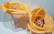 Большие цветы в прокат,  Маки-Анемоны
