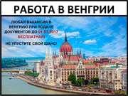 Работа в Венгрии,  Работа за границей,  Специалисты