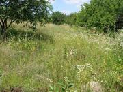 Продам участок 12 соток в живописном районе Киевской области.