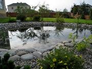 Фитодизайн,  ландшафтный дизайн,  интерьерное и экстерьерное озеленение